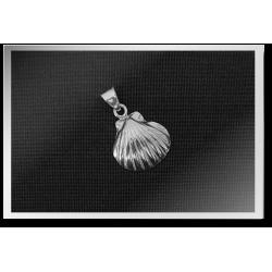 Clam Shell Pendant